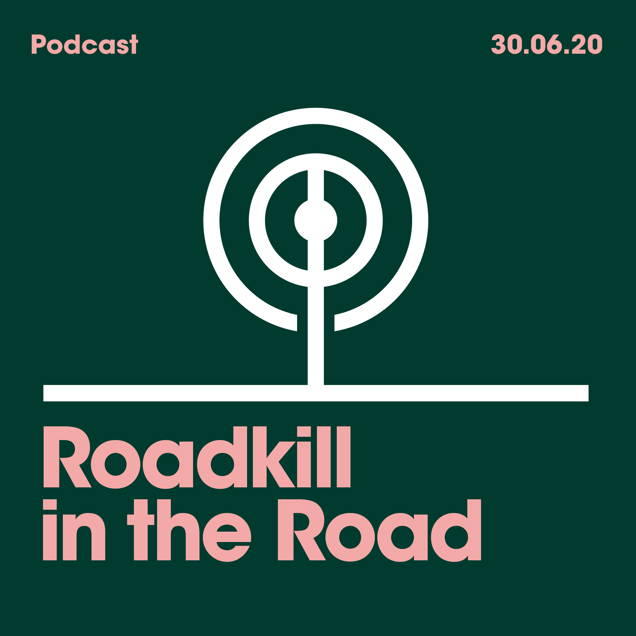 30.06.20. Roadkill in the road