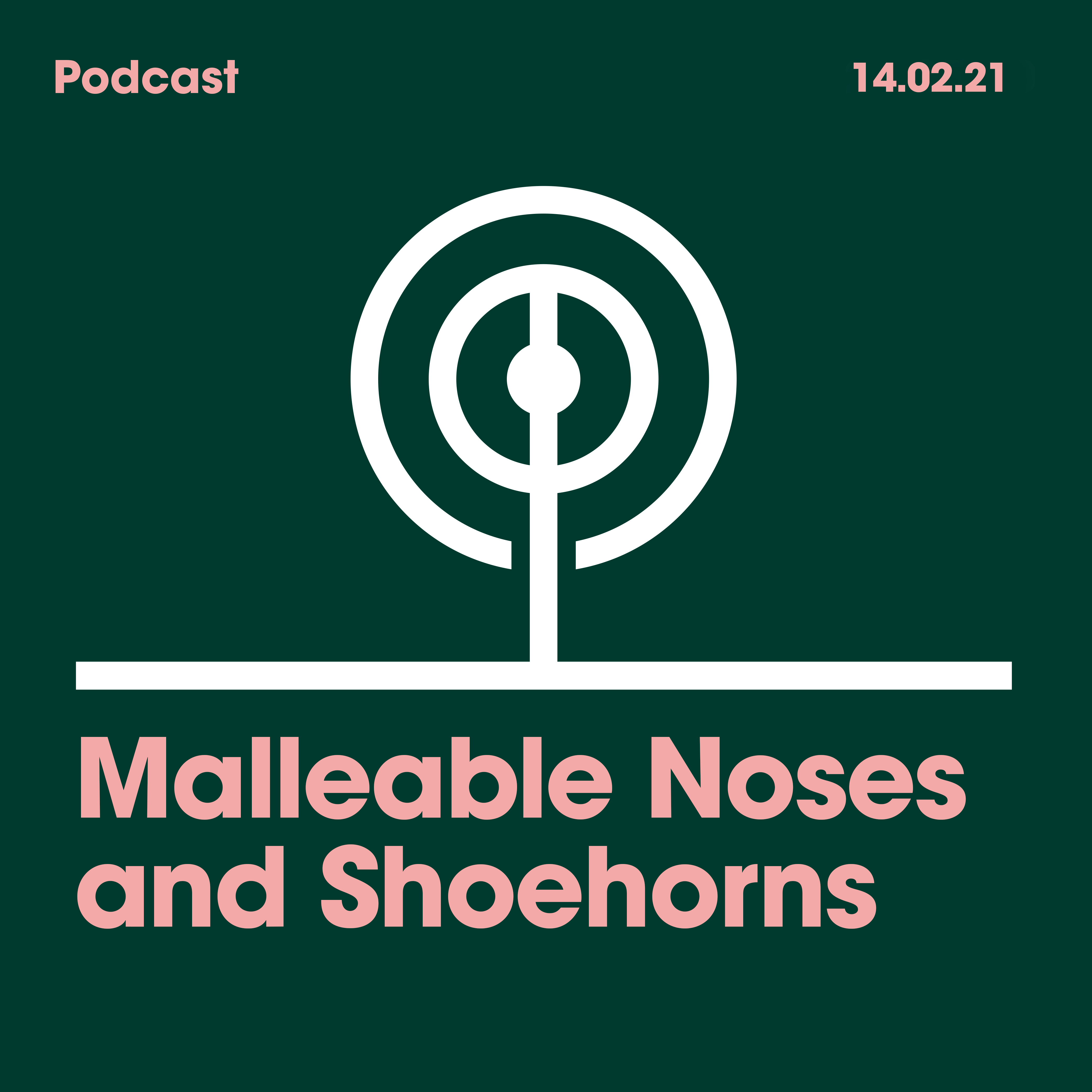 14.02.2021. Malleable Noses and Shoehorns.